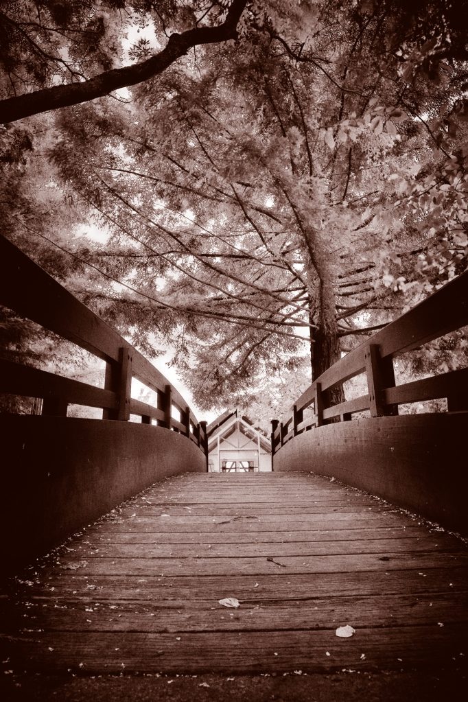 stockvault-sepia-bridge135964